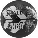 NBA Alley Oop